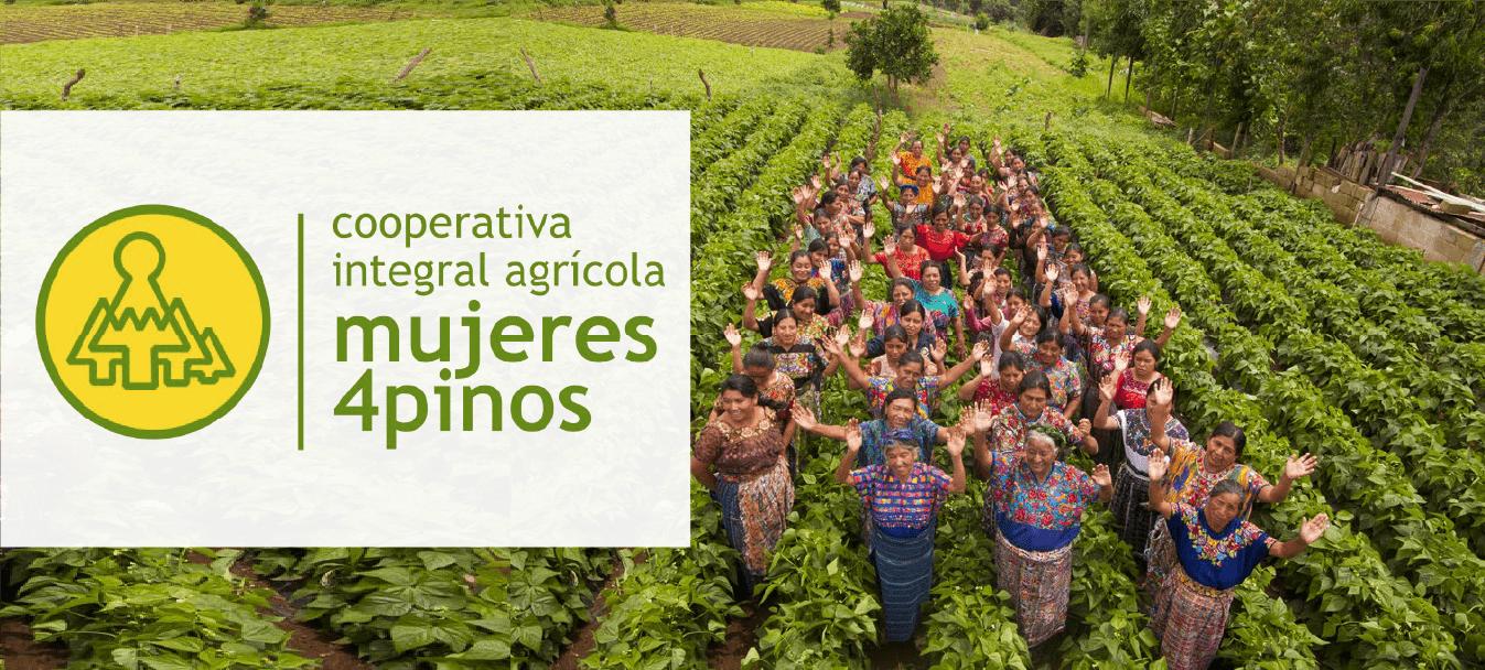 Cooperativa integral Mujeres 4 Pinos@2x min